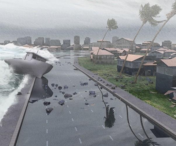 storm damage adjuster miami fl