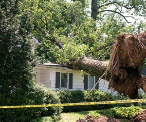 wind damage2 300x250 Storm Damage