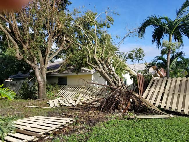 Property-damage-from-tropical-storm